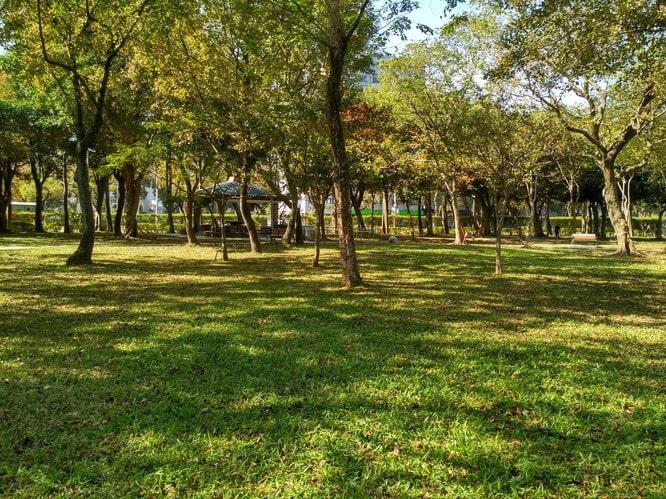 大安森林公園10