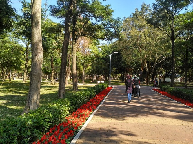 大安森林公園3
